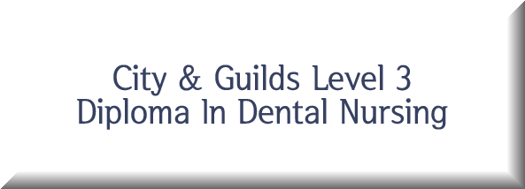 City & Guilds Level 3 Diploma In Dental Nursing Button