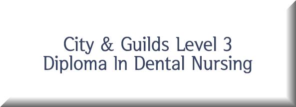 City & Guilds Level 3 Diploma In Dental Nursing Button